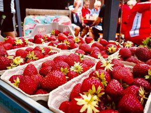 Erdbeer-Training